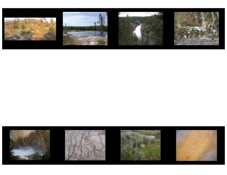 Yellowstone 2014 - 16 jun 16 - b